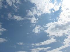 Blue Skies of Virginia