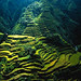 Banaue_Rice_Terraces2 by Irish Pinoy