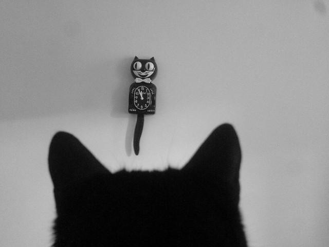 kit cat clock + cat