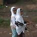Amigas en Armenian Sefer (Addis Abeba)