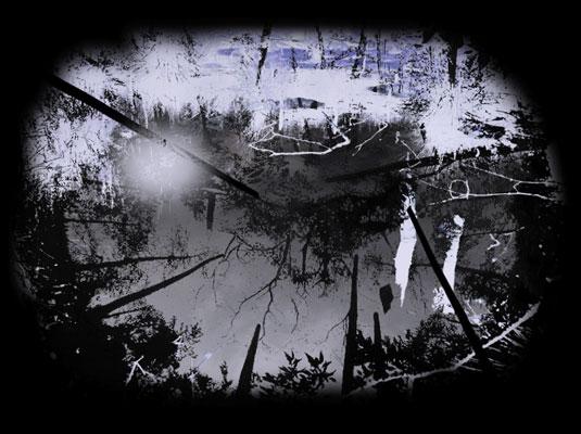 יהודית סספורטס, מתוך קולות מקומיים, 2009, וידאו. באדיבות האמנית, גלריה זומר לאמנות עכשווית, תל-אביב, גלריה אאיגן ארט, ברלין