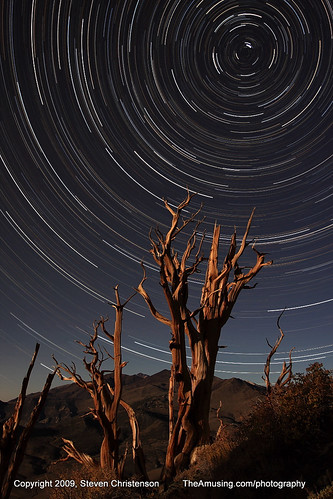 (son of) Bristlecone Pine Star Circle