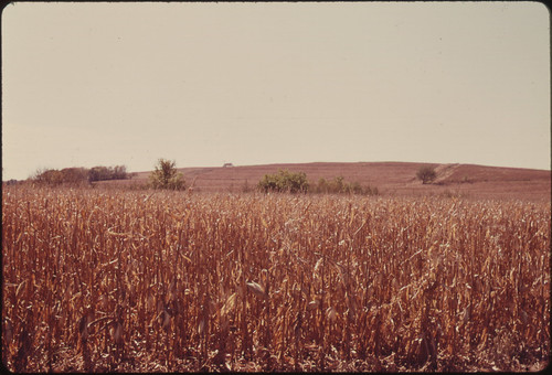 Farm in the Tallgrass Prairie