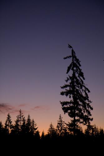 sunset public