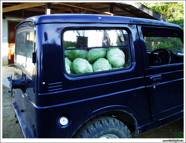 Suzuki SJ410 4x4 4WD loaded with Cabbages
