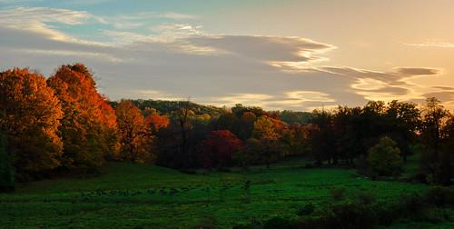 sunset fall fallfoliage foliage