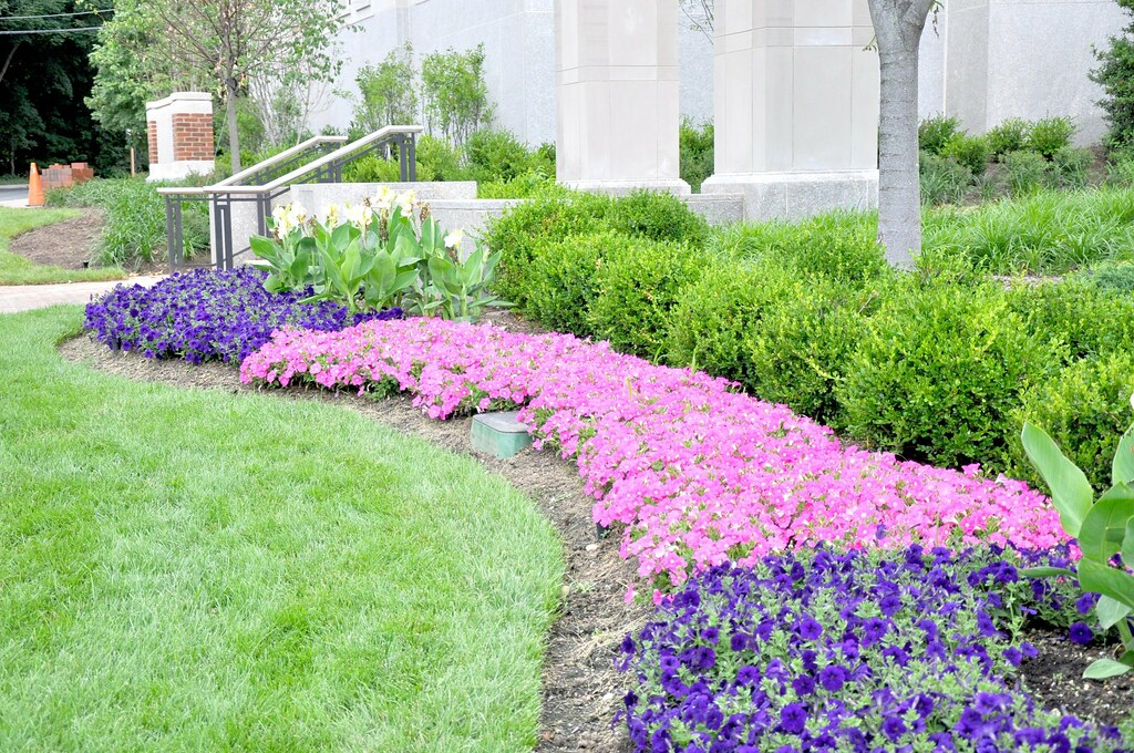 Annual Plantings at the Clock Tower