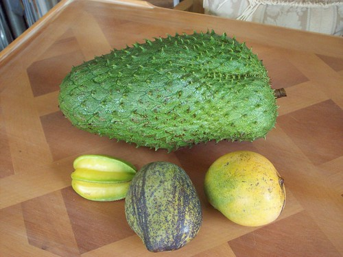 Soursop, Starfruit, 'Julie' Mango & 'Neelum' Mango all from my yard!!! 020