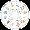 horoscopes2