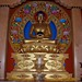 Small photo of Amitabha