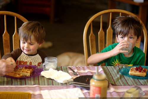brothers having raspberries on vegan sourdough waffles for breakfast    MG 1778