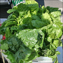 annual plant, vegetable, leaf vegetable, herb, produce, food, chard,