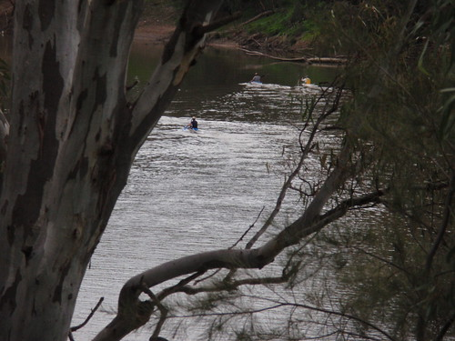 P8230081 - Wagga Wagga, NSW