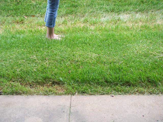 cool grass on bare feet