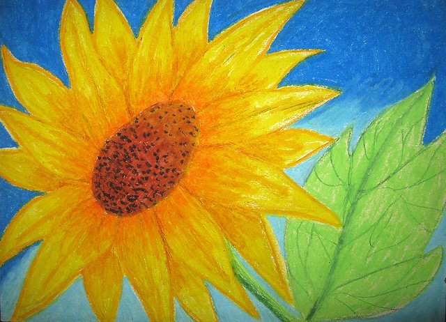 sunflower oil pastel on oslo paper flickr photo