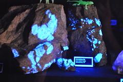 Minerals to Rocks