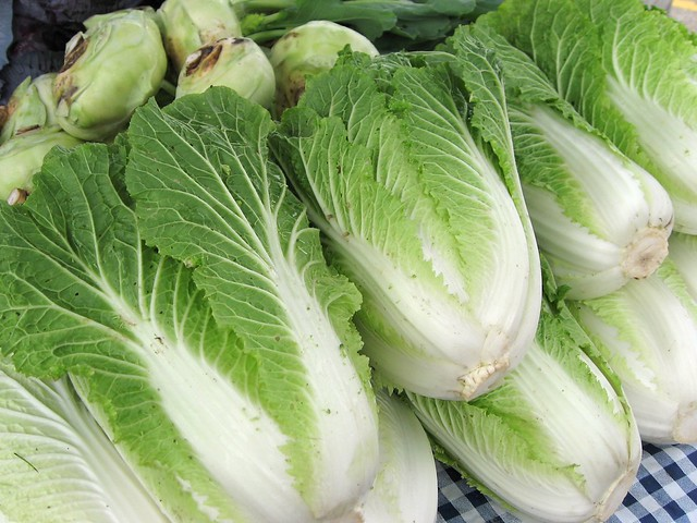 Napa Cabbage 大白菜 | Asian Vegetables to Grow in Your Garden This Autumn | FineChoiceFoods.com