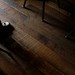 Small photo of Alembic's Wooden Floor