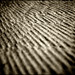 Dunepaper (11 of 11)