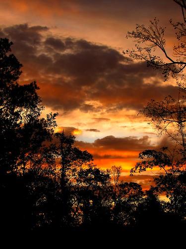 autumn sky ga georgia dawn october woodstock