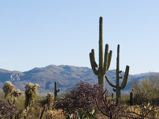 Beautiful arizona scenery flickr photo sharing - Beautiful panoramic view house to take full advantage of the scenery ...