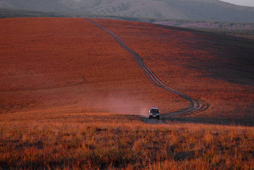 1769 A morning drive in autumn--Bashang Grassland , China
