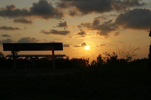 sunset geotagged geo:lat=281926636225482 geo:lon=827867775935804