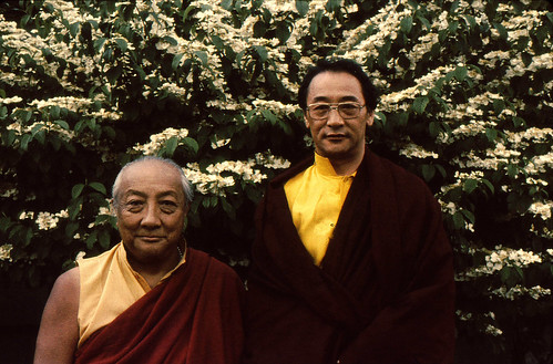 HH Dilgo Khyentse Rinpoche and HH Dagchen Sakya, in front of a white flowering tree, Seattle, Washington, USA by Wonderlane