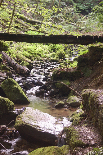 Stream, rocks and bridge
