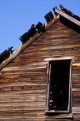 Derelict House Hamilton MT
