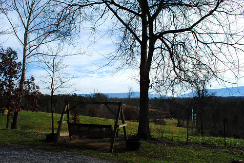 trees nature outdoors tennessee country clarity swing laurahalfacre kimonoloco