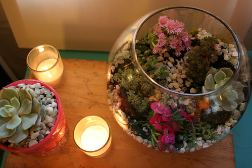 Lancaster County Wedding Planner | Terrarium Centerpiece