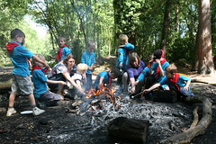 Willows Beavers Cooking