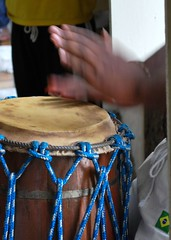 percussion, barrel drum, drum, hand drum, blue, skin-head percussion instrument,