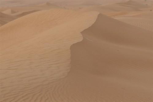 Las dunas tienen una altura e inclinación muy pronunciada, que hace que la adrenalina suba al máximo Dubai, imprescindible safari en 4x4 - 3839725729 59d574a94b - Dubai, imprescindible safari en 4×4