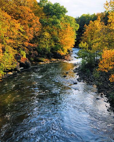 autumn fall water rocks colorful stream fallcolors imagebydesignworks