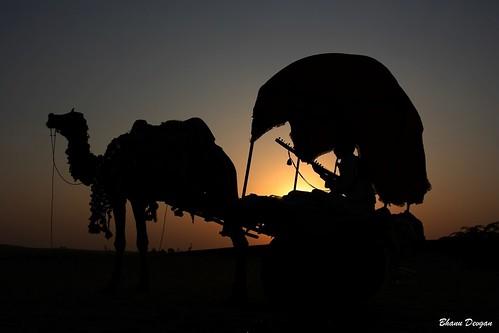 Sunset at Pushkar, Rajasthan, India