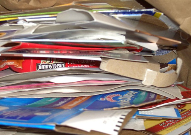 Paper Recycling, by Traci Gardner