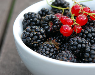 Wild Blackberries and Redcurrants