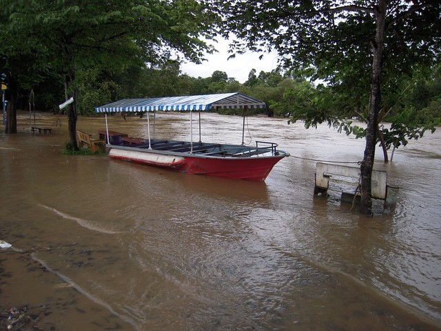 Dubare under flooding