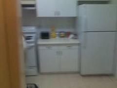 kitchen appliance(1.0), room(1.0), refrigerator(1.0), major appliance(1.0),