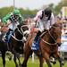 Horse Racecourse in York