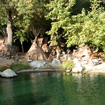Disneyland  and Club Lucky June 2009 023
