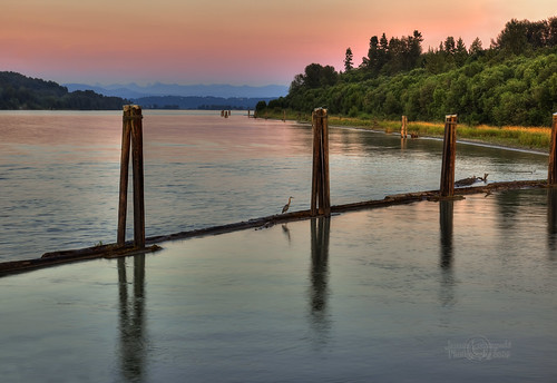 longexposure blue sunset bird river geotagged fraser reversed hdr fortlangley janusz leszczynski albionferry hereon geo:lat=49179838 geo:lon=122567103 001559