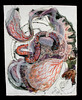 """Proteanna Series #5,  2006,  monotypes, aqueous media, and thread/paper,  24"""" x 19"""""""