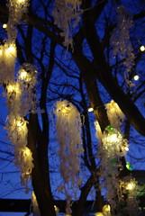 Christmas decorations - Southbank