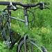 Jerry's Touring Bike
