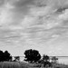 Small photo of GIRONDE