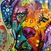 Dean Russo / Art + Artists / SML
