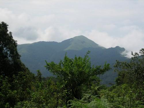 india nature trek karnataka coorg